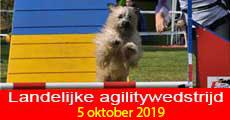 Agility 2018